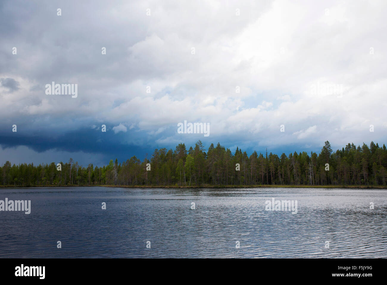 Rainy atmosphere at lake in Finnish Taiga, Kainuu, North Karelia, Finland - Stock Image