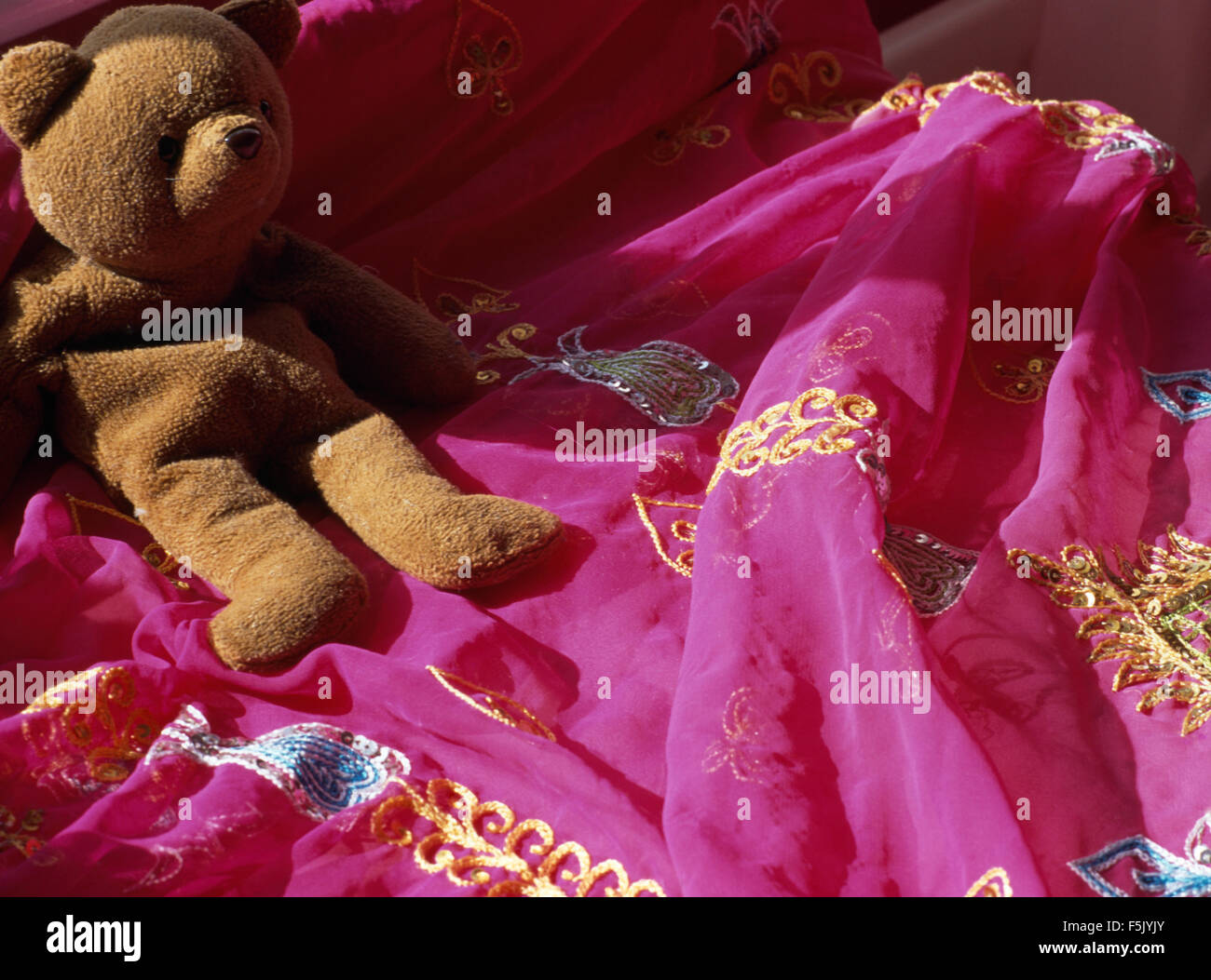 Close-up of an old teddy bear on bright pink sari fabric - Stock Image
