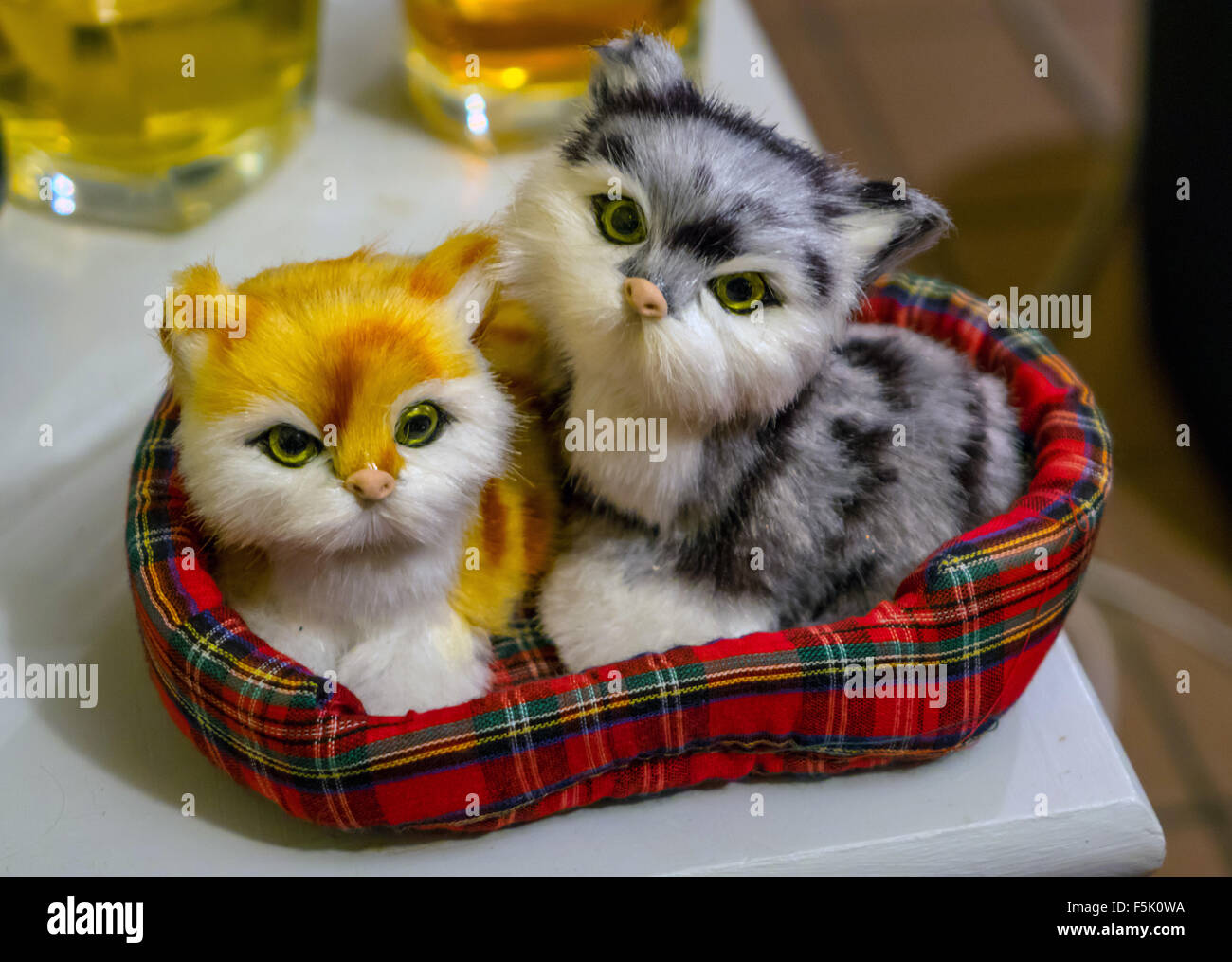 Two cute toy cays in tartan basket, looking at camera - Stock Image