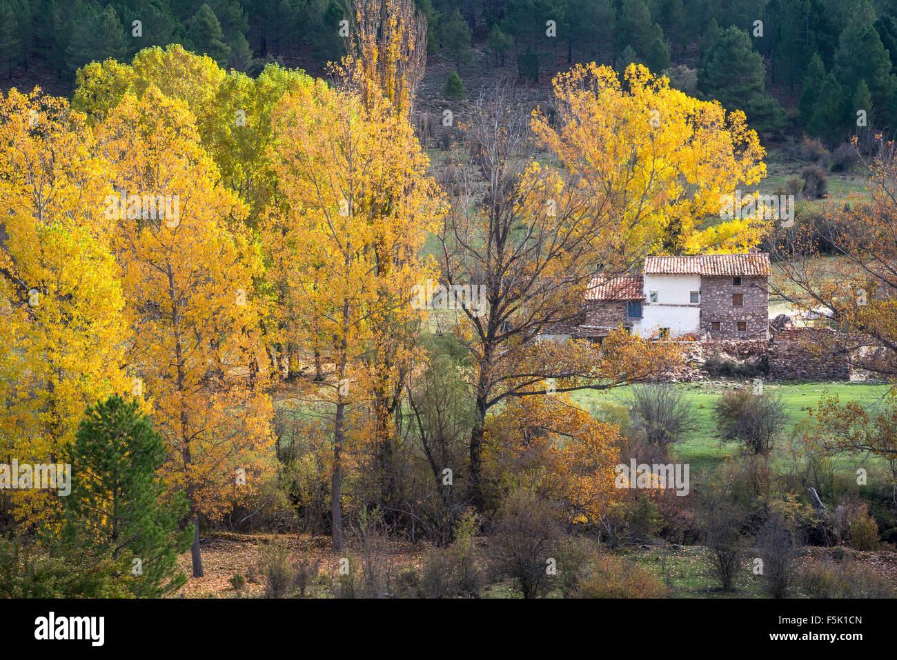 A farm house by the Rio Jucar on the road from Una to Huelamo in the Serrania de Cuenca, Castilla-la mancha, Central - Stock Image