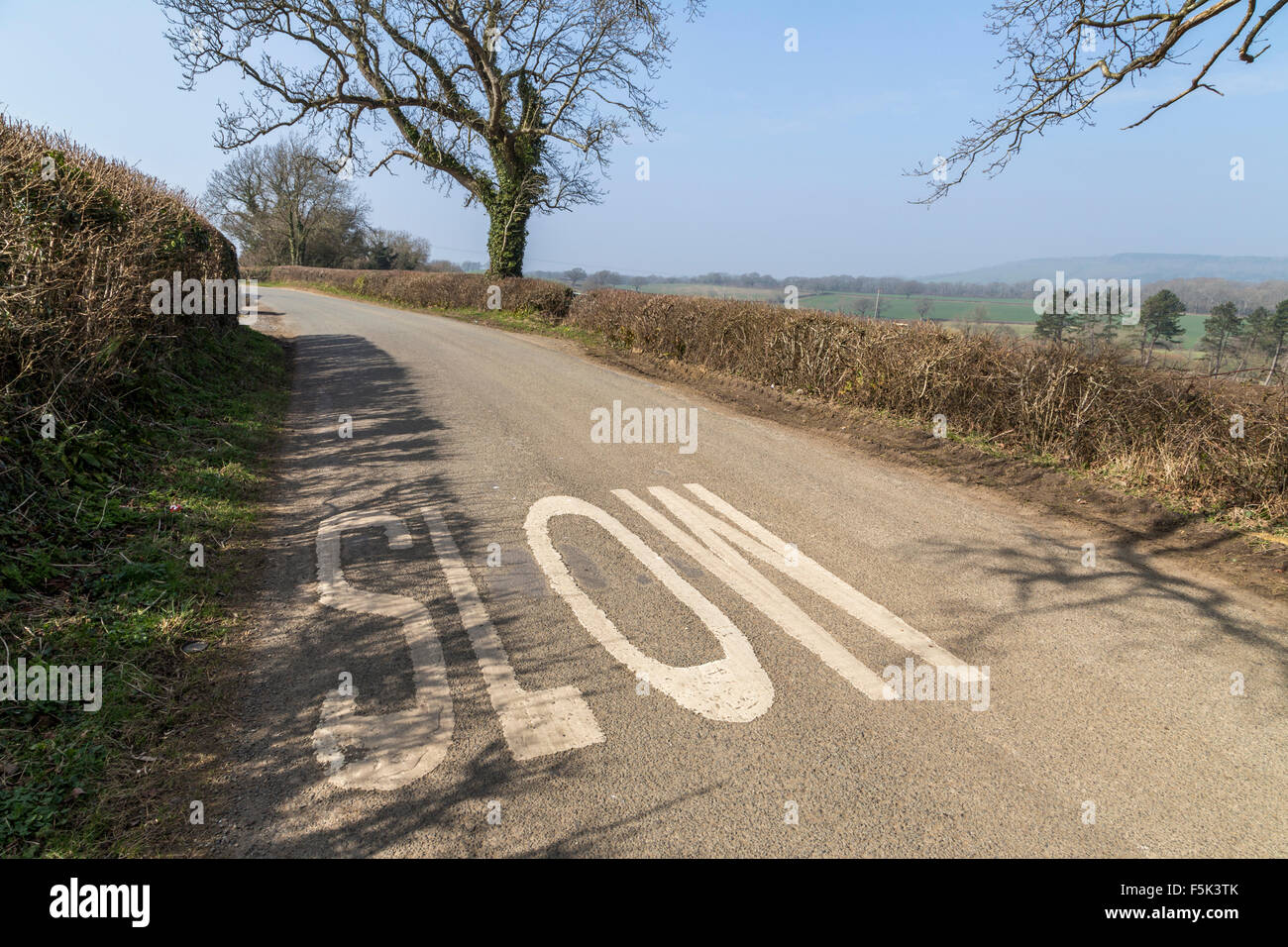 The painted word 'SLOW' on a countryside lane before a blind bend, corner. Hedgerow lined trees. - Stock Image
