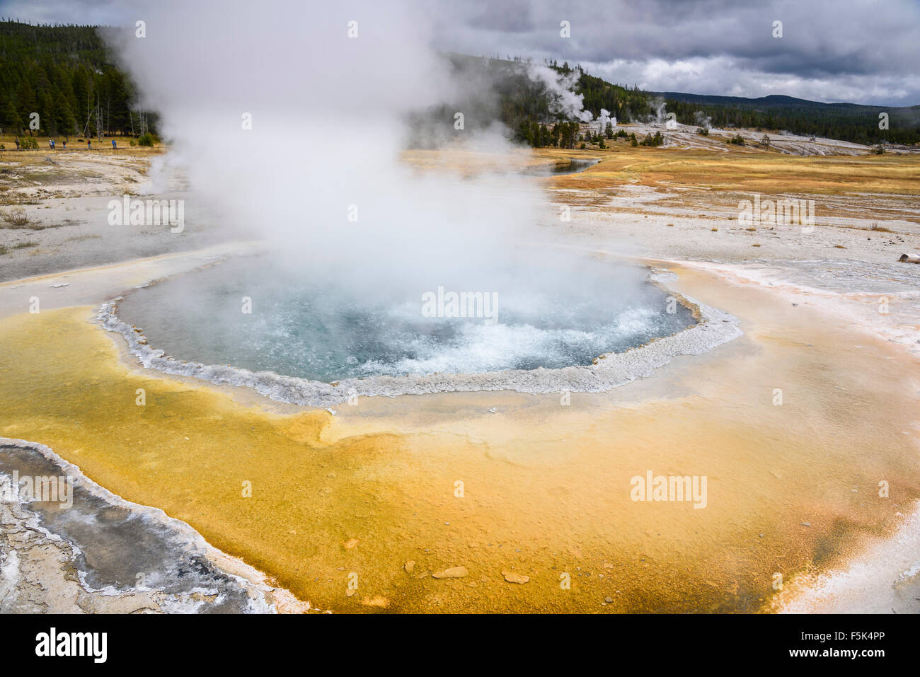 Crested Pool, Upper Geyser Basin, Yellowstone National Park, Wyoming, USA - Stock Image