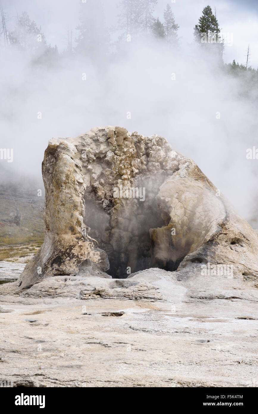 Giant Geyser, Upper Geyser Basin, Yellowstone National Park, Wyoming, USA - Stock Image
