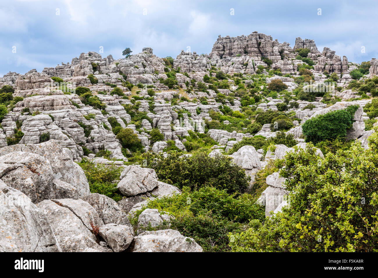Spain, Andalusia, Province of Malaga, the karstic landscape of the Torcal de Antequera - Stock Image