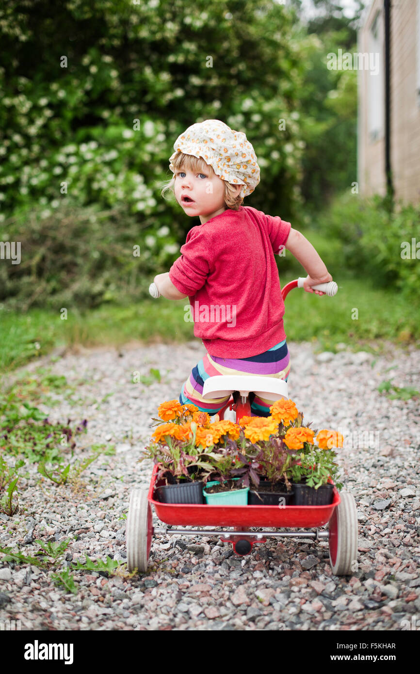 Sweden, Sodermanland, Strangnas, Girl (2-3) on tricycle - Stock Image