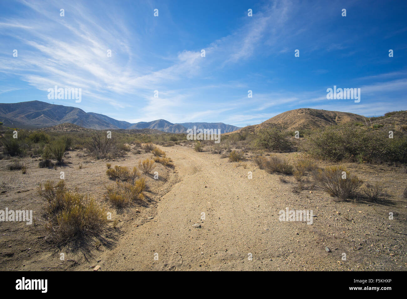 Dirt road in the wilds of the Mojave desert wilderness of Southern California. - Stock Image