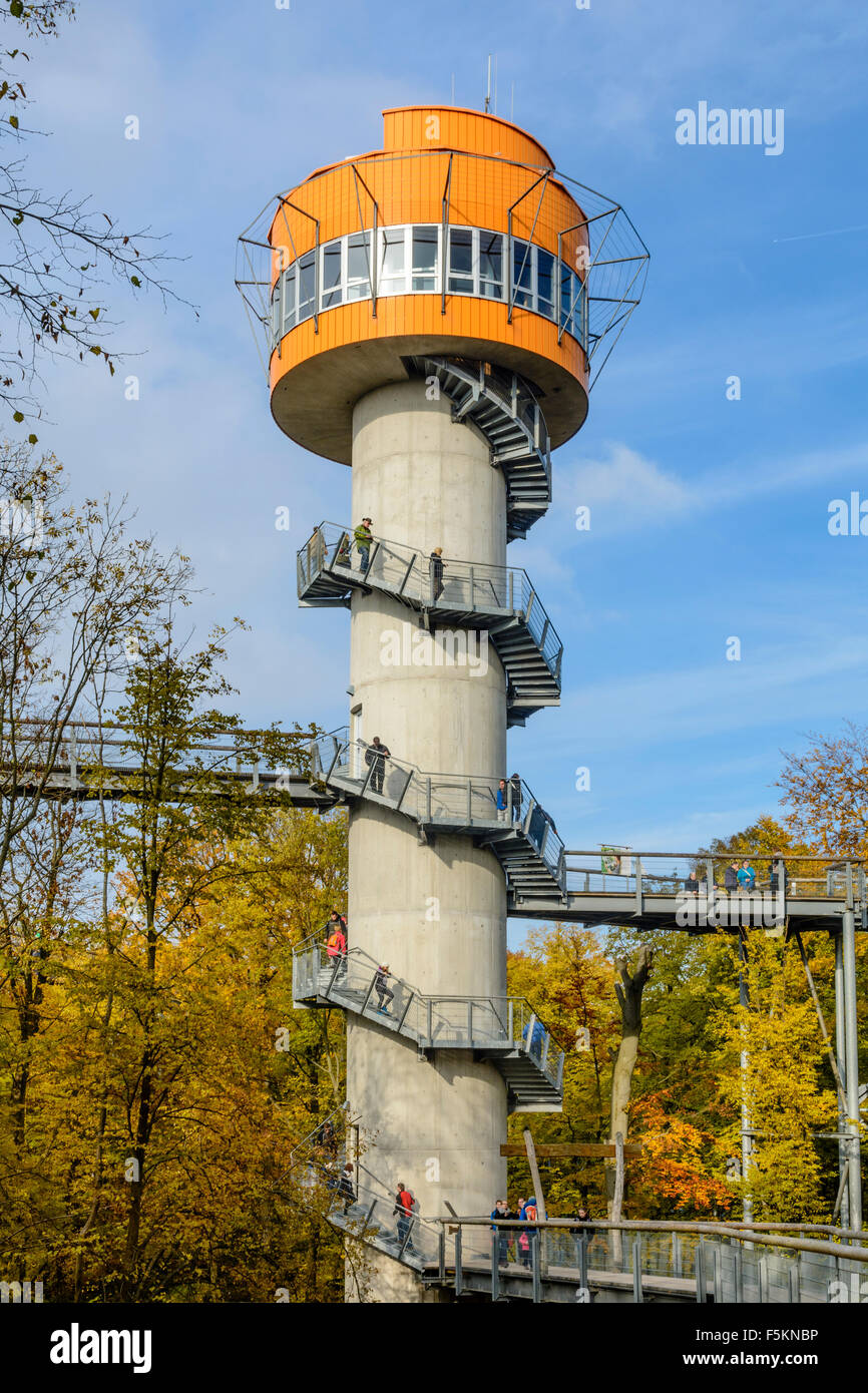 Treetop walkway in Hainich National Park, Thuringia, Germany Stock Photo