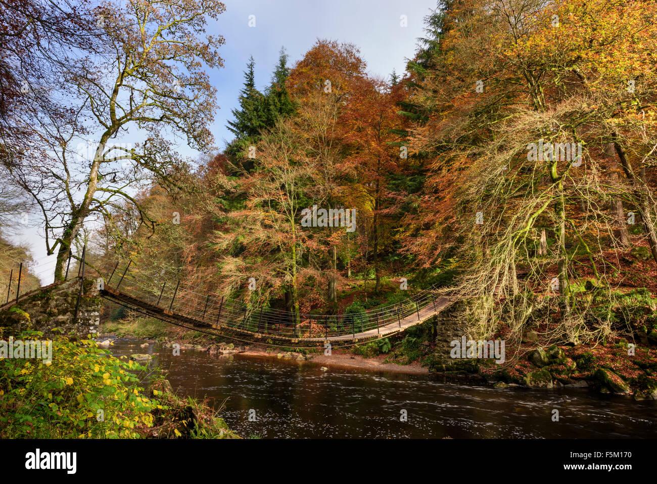 Allen Banks, Northumberland - Stock Image