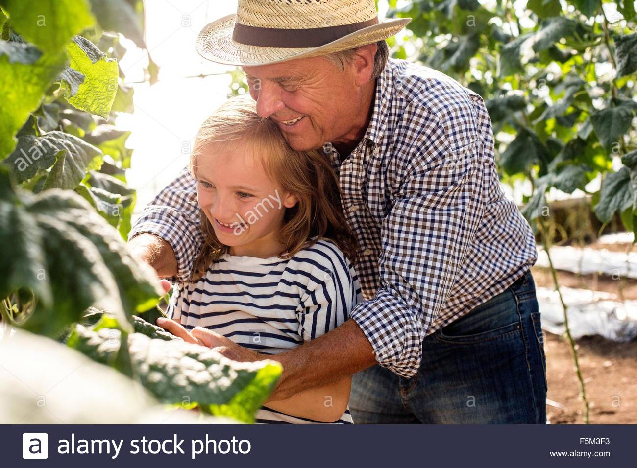 Grandfather standing behind granddaughter tending to plants - Stock Image