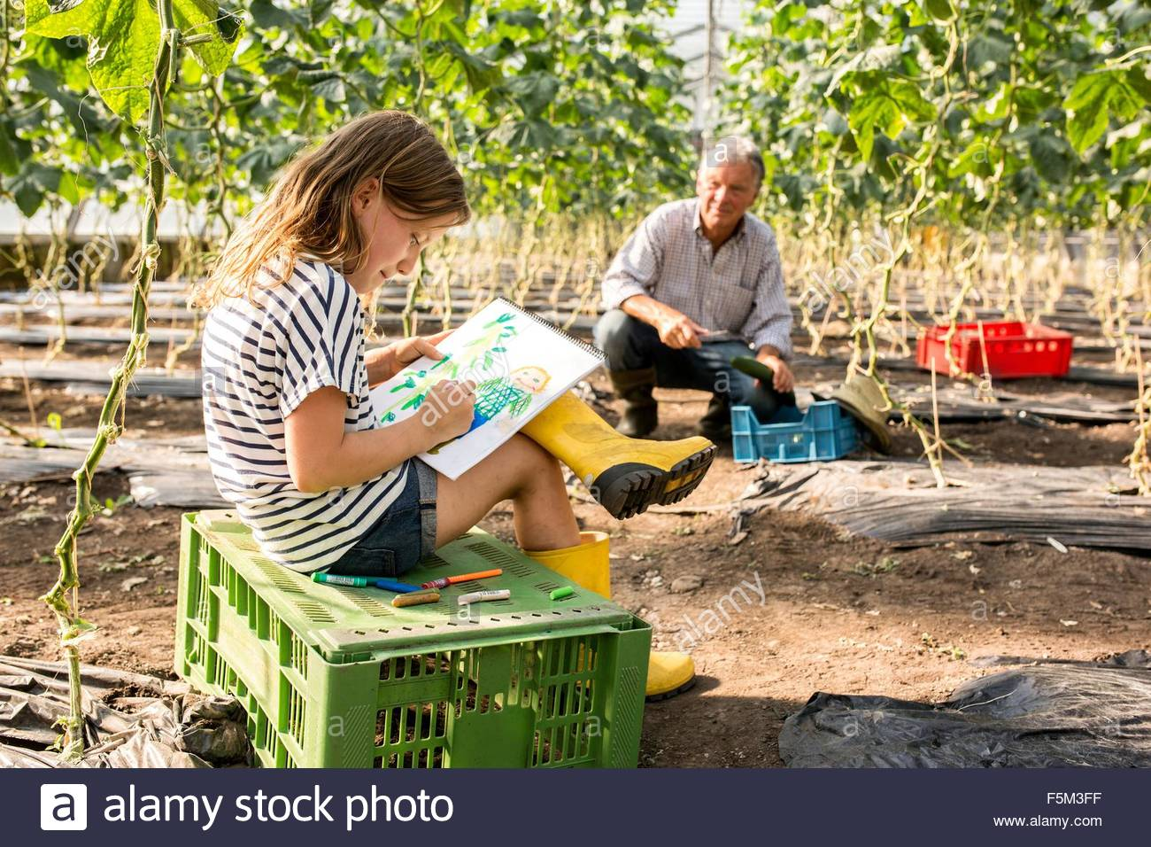 Girl sitting on crate drawing while grandfather works - Stock Image