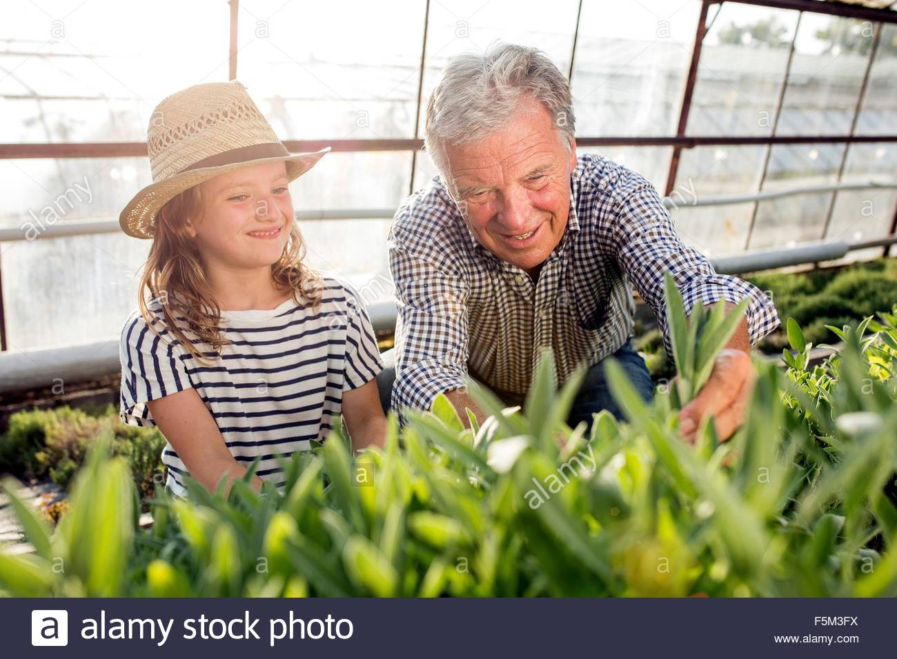 Grandfather and granddaughter in hothouse smelling plants smiling - Stock Image