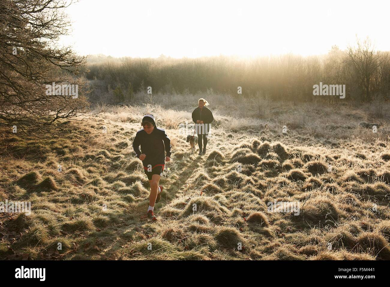 High angle front view of mother, son and dog running on grassland - Stock Image
