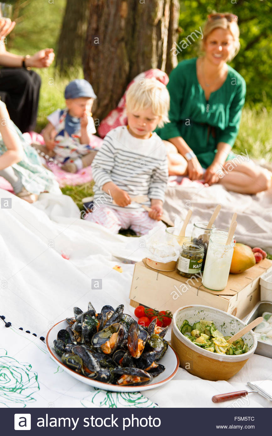 Sweden, Sodermanland, Nacka, Family picnic - Stock Image