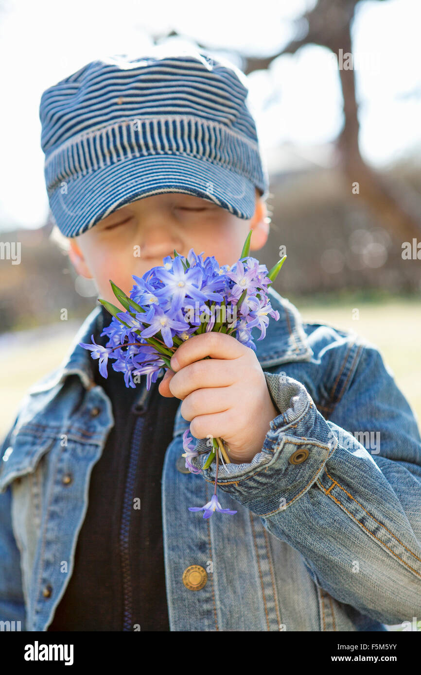 Sweden, Sodermanland, Boy (6-7) smelling flowers - Stock Image