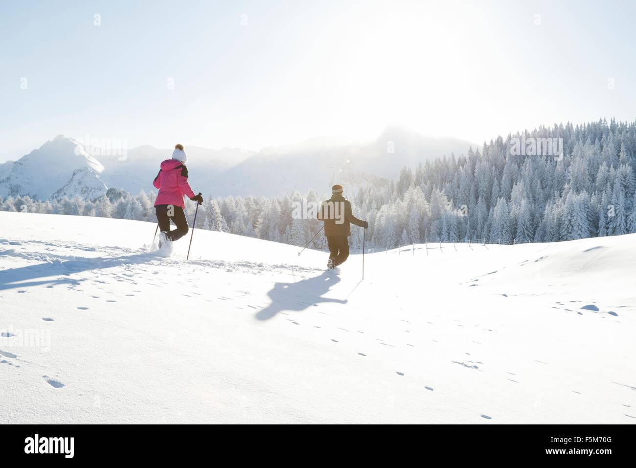 Rear view of senior couple using walking poles on snow covered landscape, Sattelbergalm, Tyrol, Austria - Stock Image