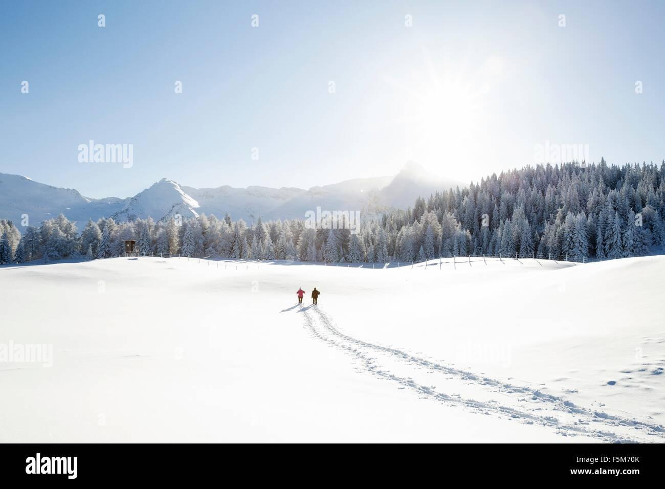 Snow tracks of senior couple walking to trees and mountain range, Sattelbergalm, Tyrol, Austria - Stock Image