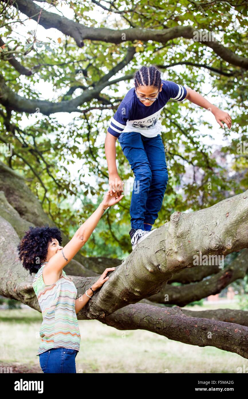 Mature woman holding sons hand whilst climbing park tree branch - Stock Image