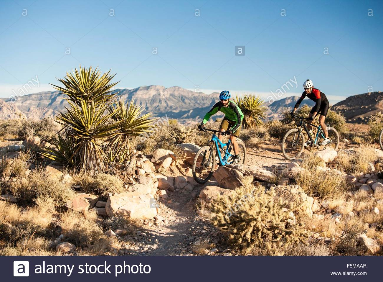 Mountain bikers, Las Vegas, Nevada, USA - Stock Image