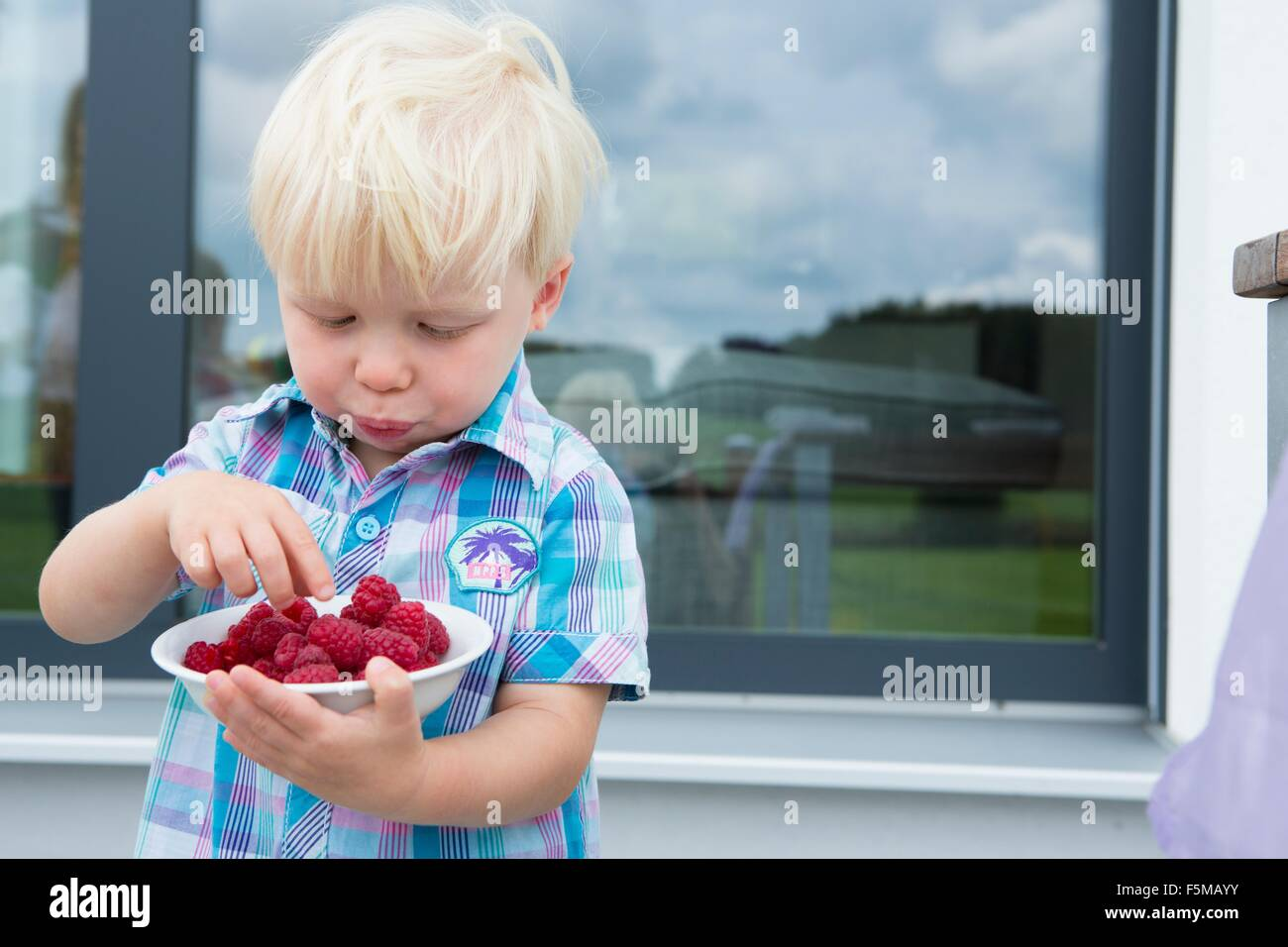 Male toddler on patio eating a bowl of raspberries - Stock Image
