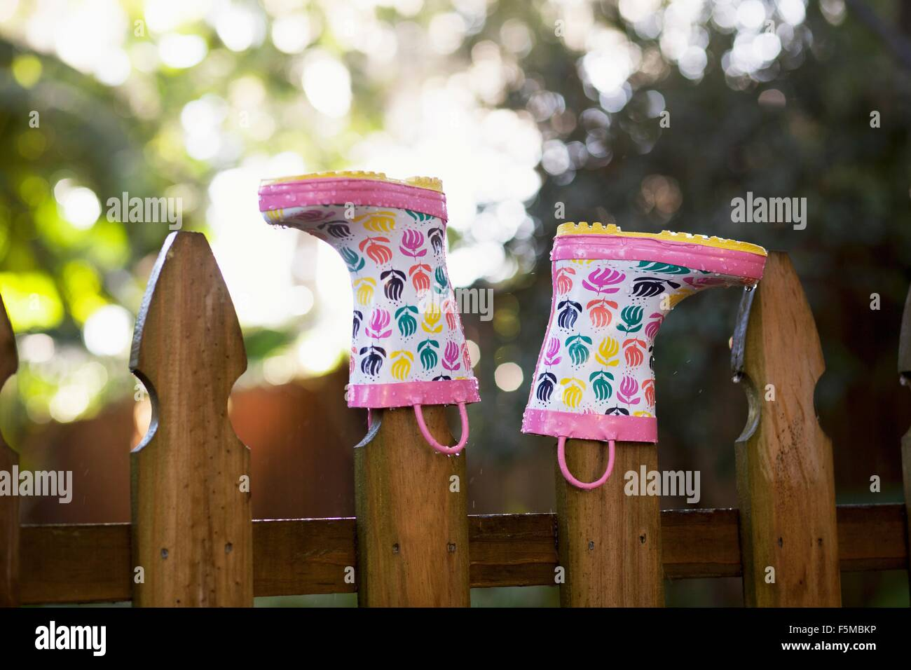 Rubber boots, upturned, on wooden fence posts Stock Photo