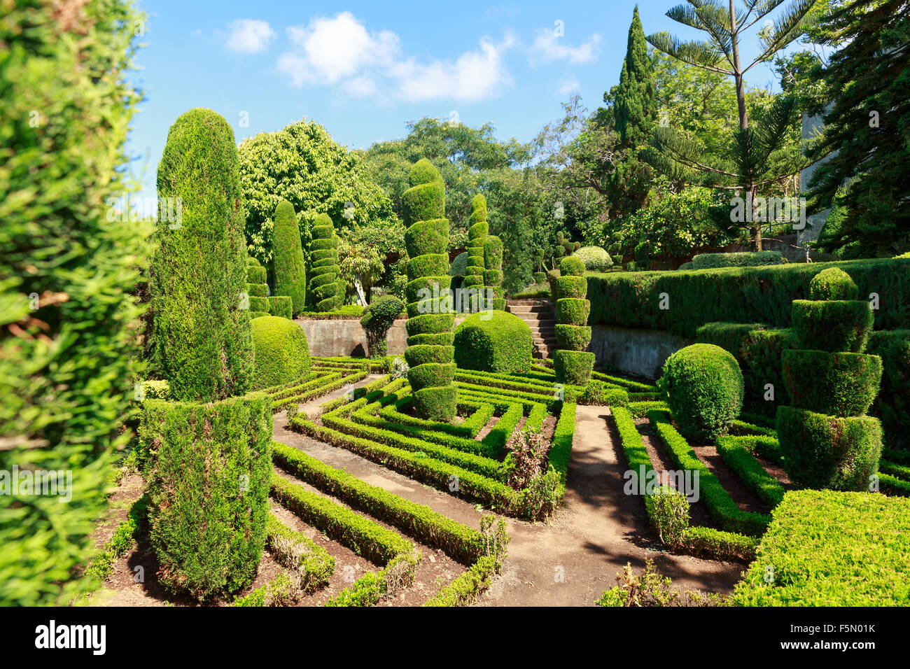 Beautiful decorative green bushes and trees in botanic garden Stock ...