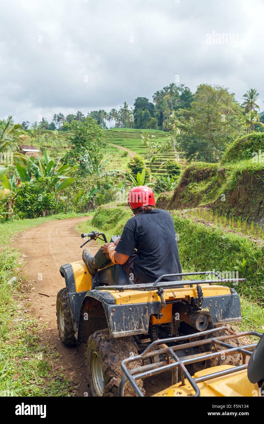 Quadrocycle Jungles Safari, Bali, Indonesia - Stock Image