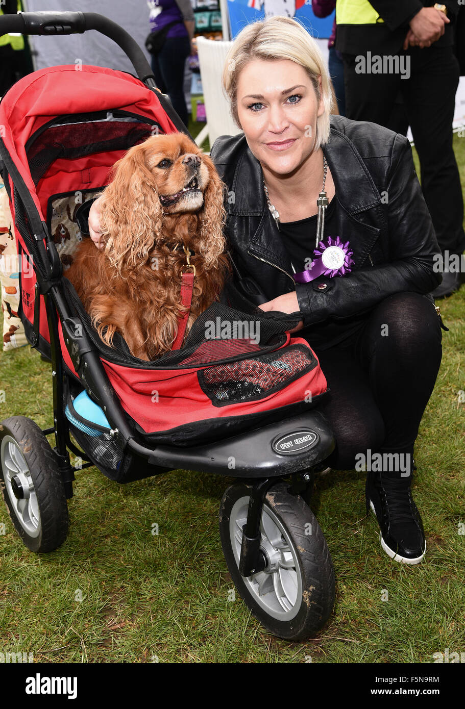 PupAid Puppy Farm Awareness Day at Primrose Hill, London  Featuring: Jo O'Meara Where: London, United Kingdom - Stock Image