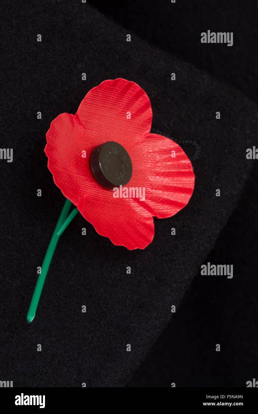Poppy Scotland, four petaled remembrance poppy pinned to the lapel of a black coat - Stock Image