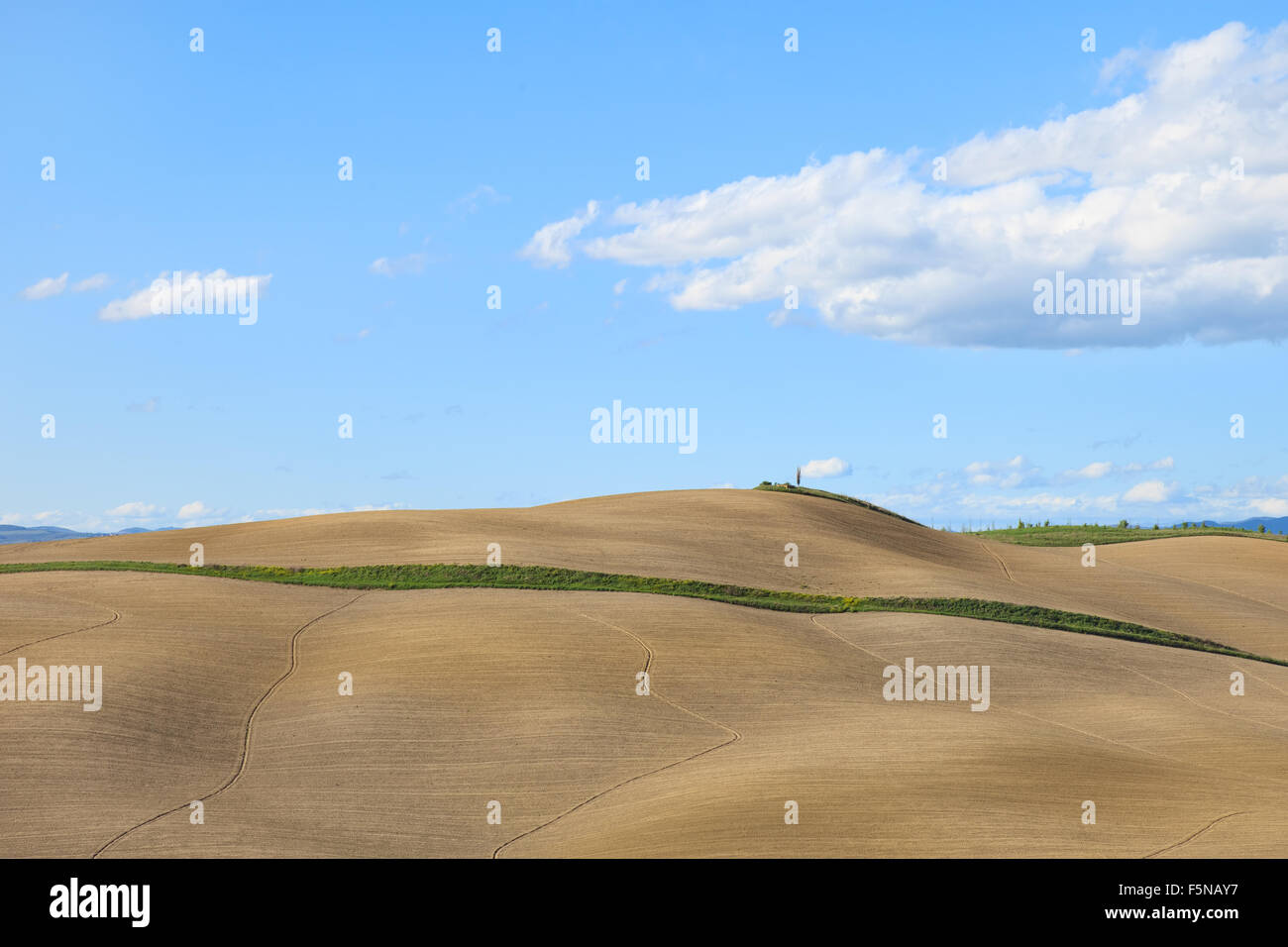 Tuscany, undulating plowed field, rural landscape in Crete Senesi, Italy, Europe. Subtle shadows, blue cloudy sky Stock Photo