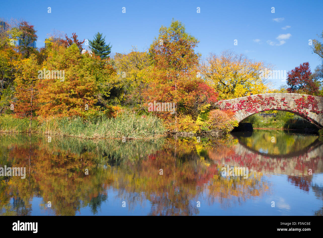 Colorful autumn view of Central Park in New York City at landmark Gapstow Bridge - Stock Image