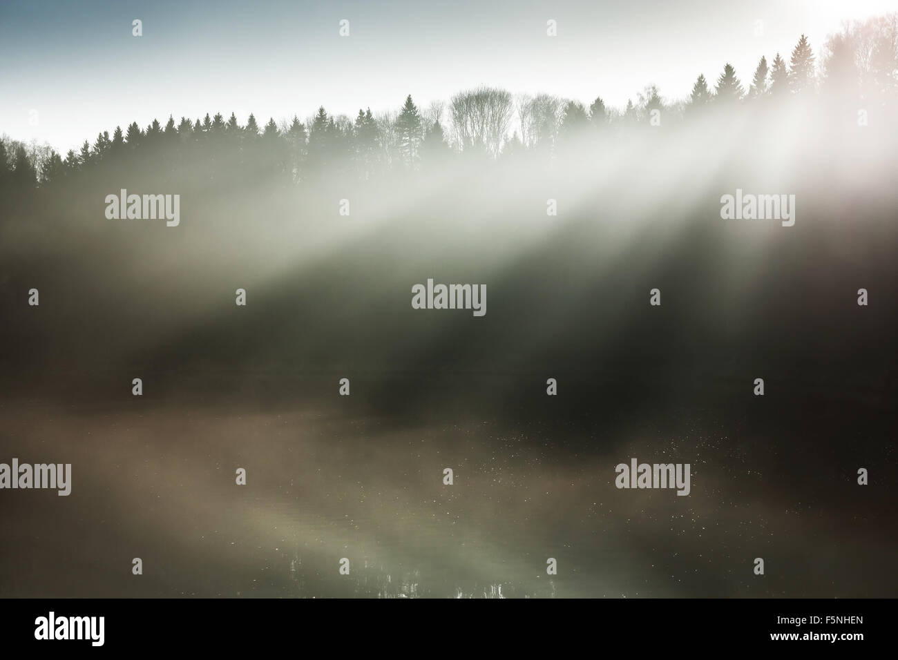 Beautiful sun rays - Stock Image