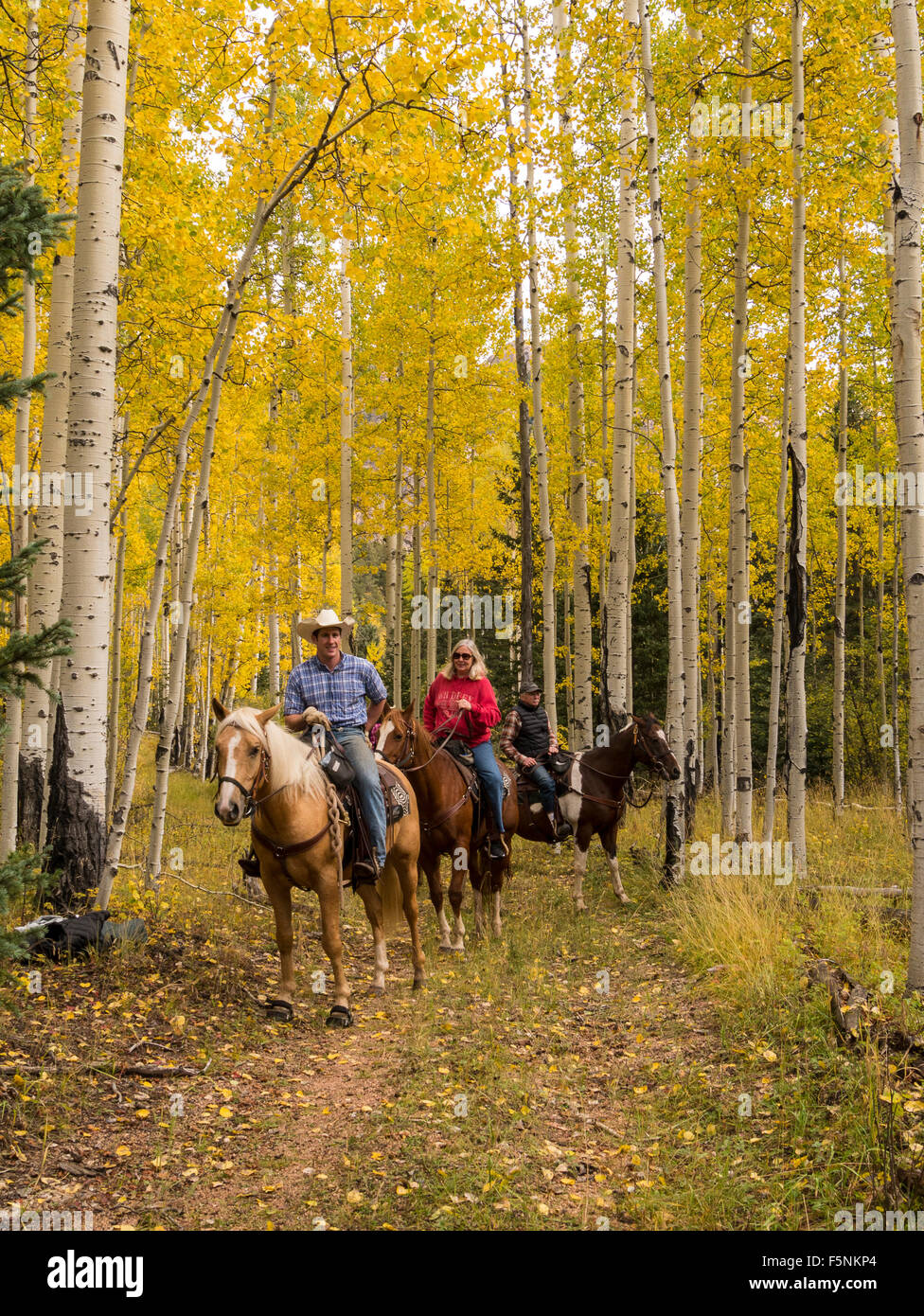 Ranch Colorado Stock Photos & Ranch Colorado Stock Images - Alamy