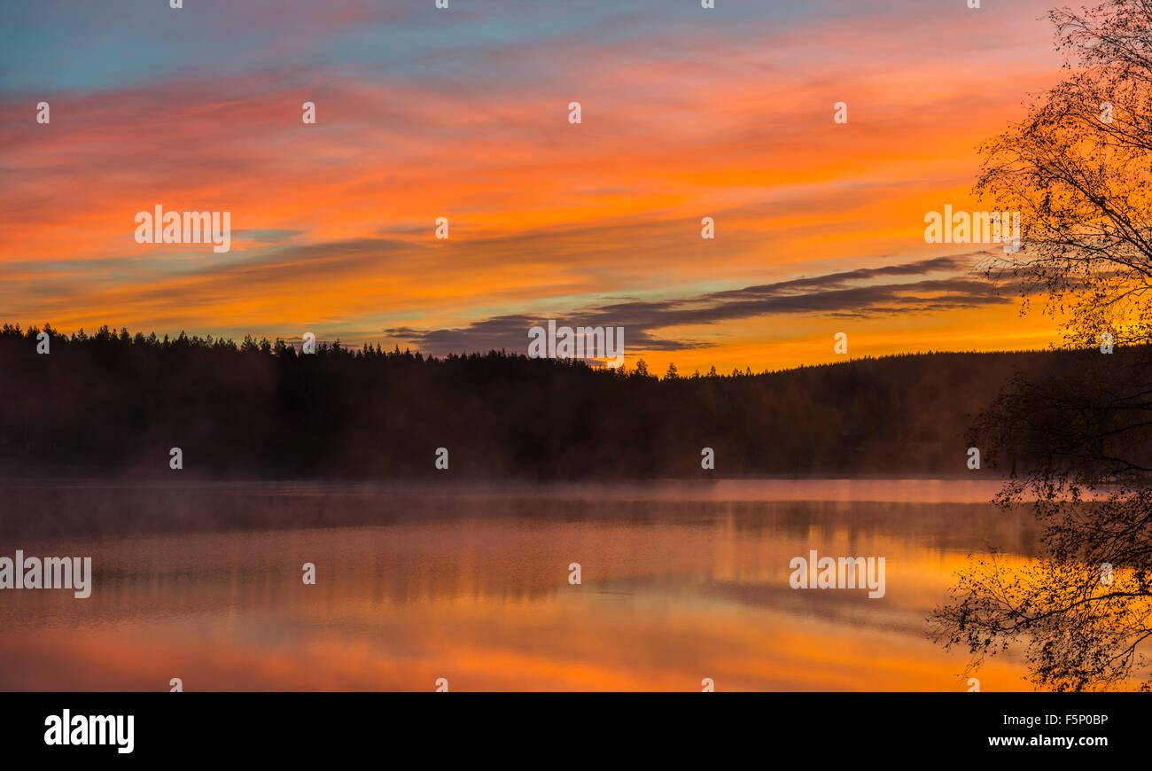 Sunrise over forest lake, Sweden - Stock Image