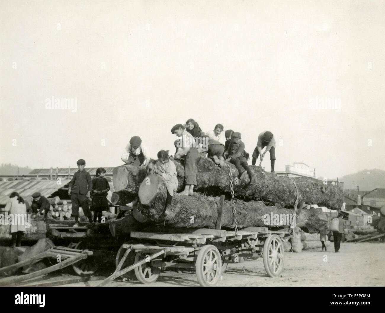 A large group of children helps to bind the logs on a wagon, Italy - Stock Image