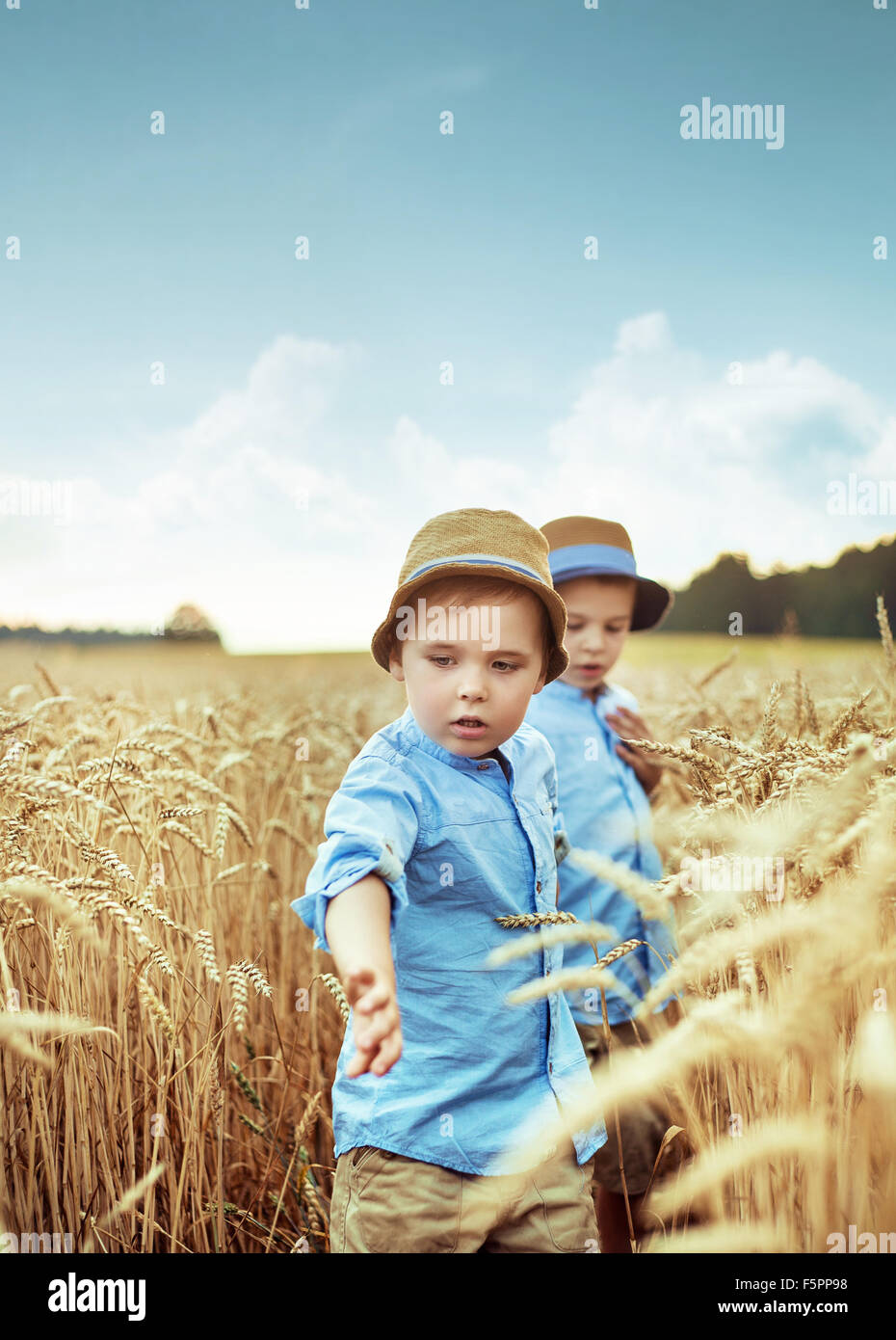 Two cute brothers in the wheat field - Stock Image