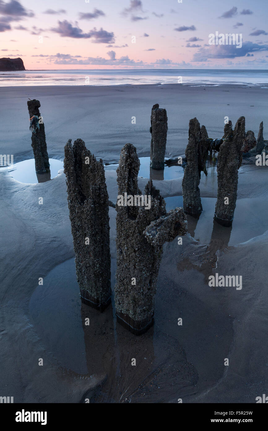 Groynes covered in barnicles on the beach at Sandsend at sunset Stock Photo