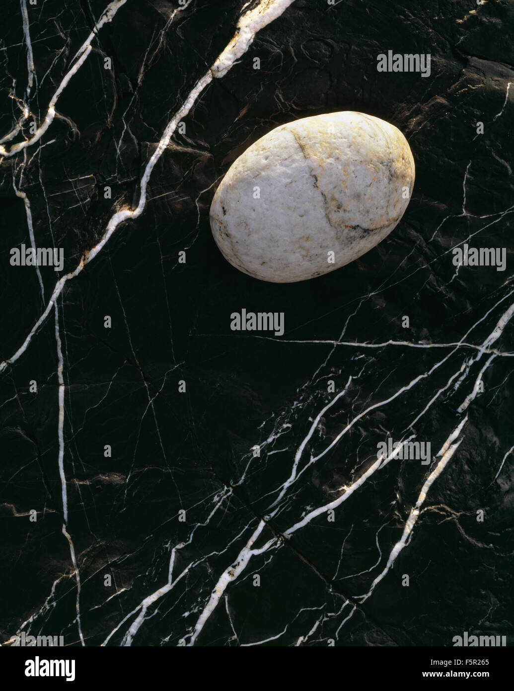 A white pebble rests on black rock with contracting marbling Stock Photo