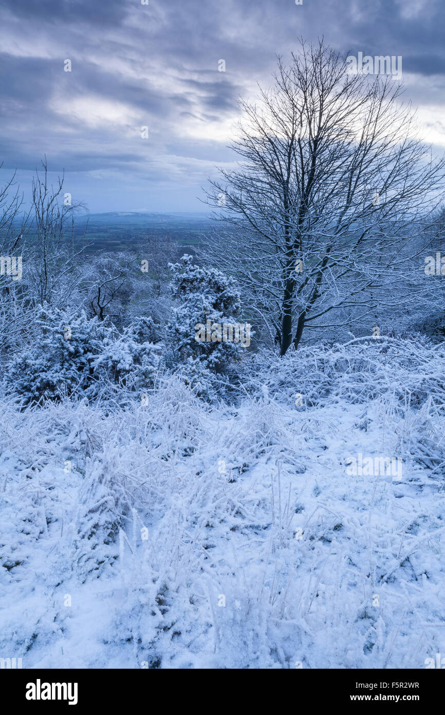 An overnight snow shower has covered the Malvern Hills with snow. Stock Photo