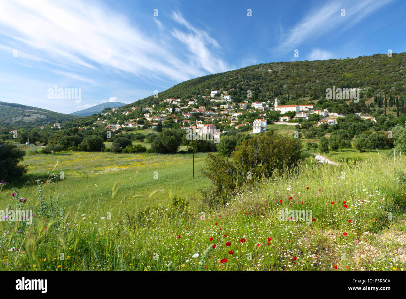 The village of Troianata, Kefalonia, with wildflowers growing in the foreground Stock Photo