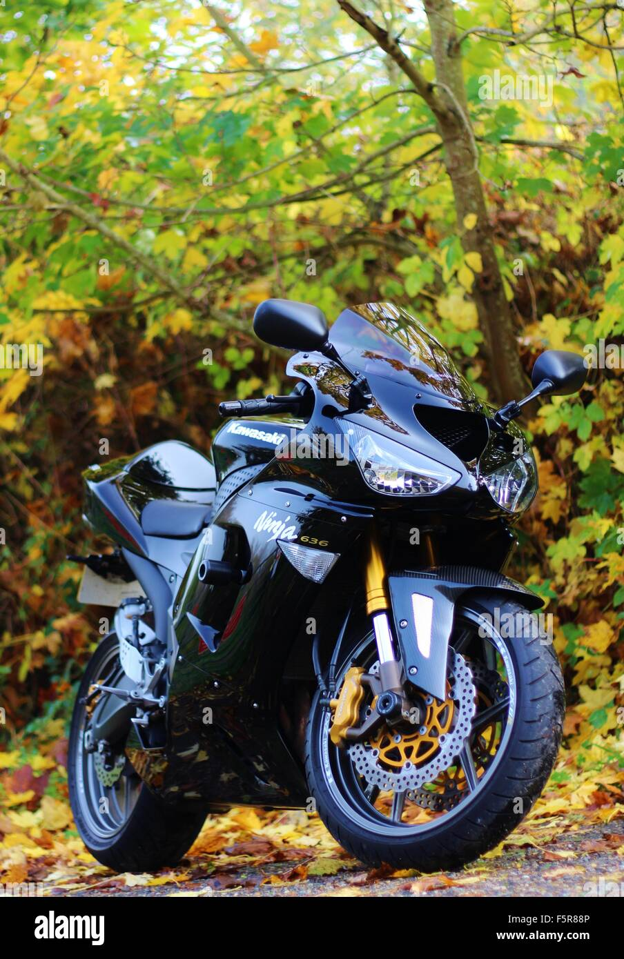 Black Kawasaki Ninja Zx 6r Autumn Leaves Stock Photo 89636534 Alamy