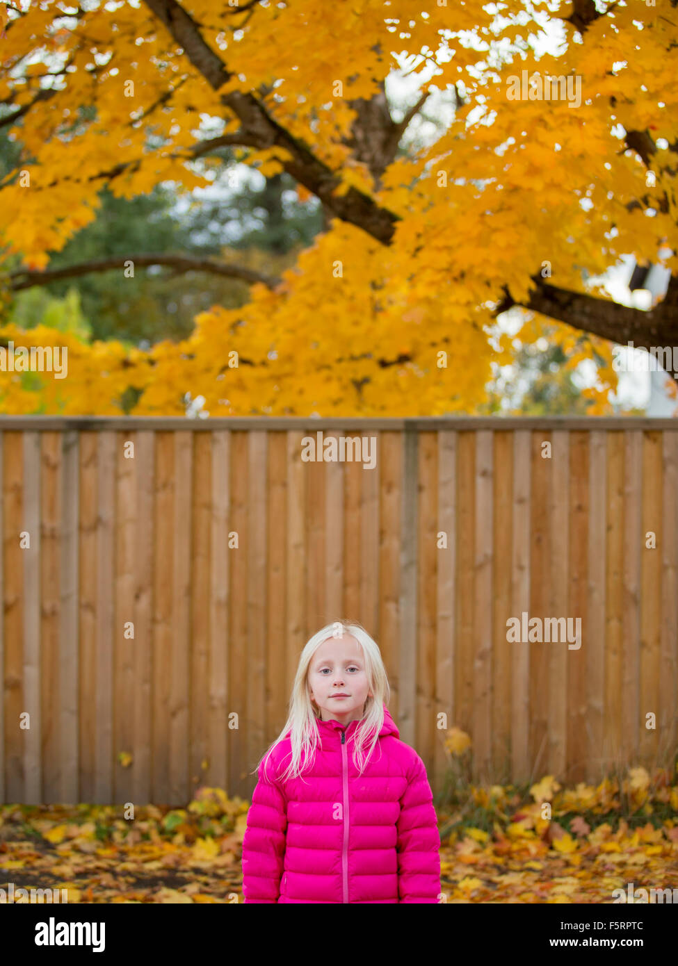 Sweden, Vastergotland, Lerum, Portrait of girl (4-5) in pink jacket - Stock Image