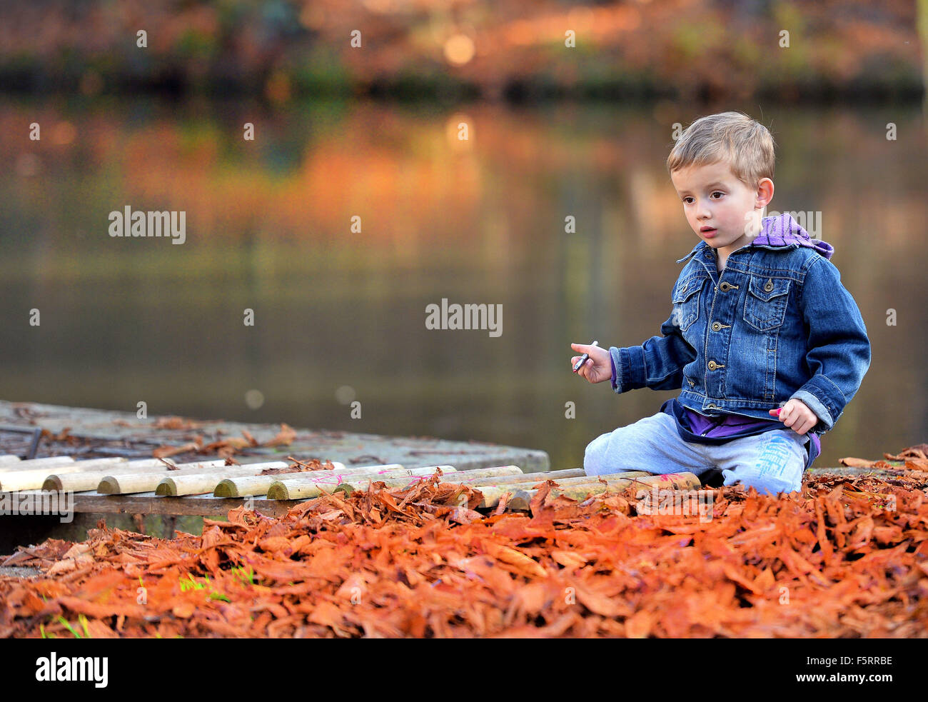 Prague, Czech Republic. 8th Nov, 2015. A boy enjoys warm and sunny autumn weather in Prague, Czech Republic, on Stock Photo