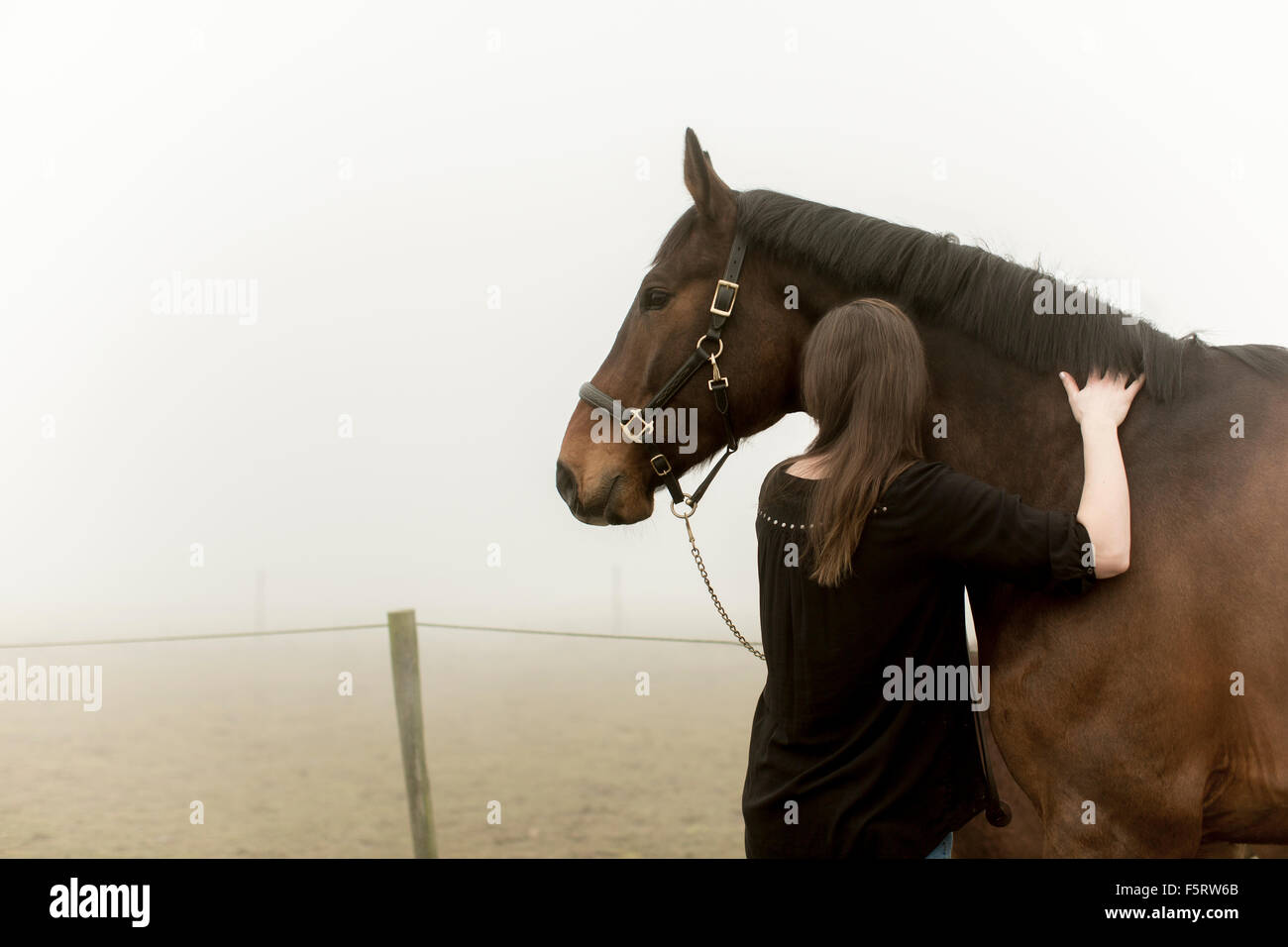 Sweden, Skane, Mid-adult woman with horse on dirt road in fog - Stock Image