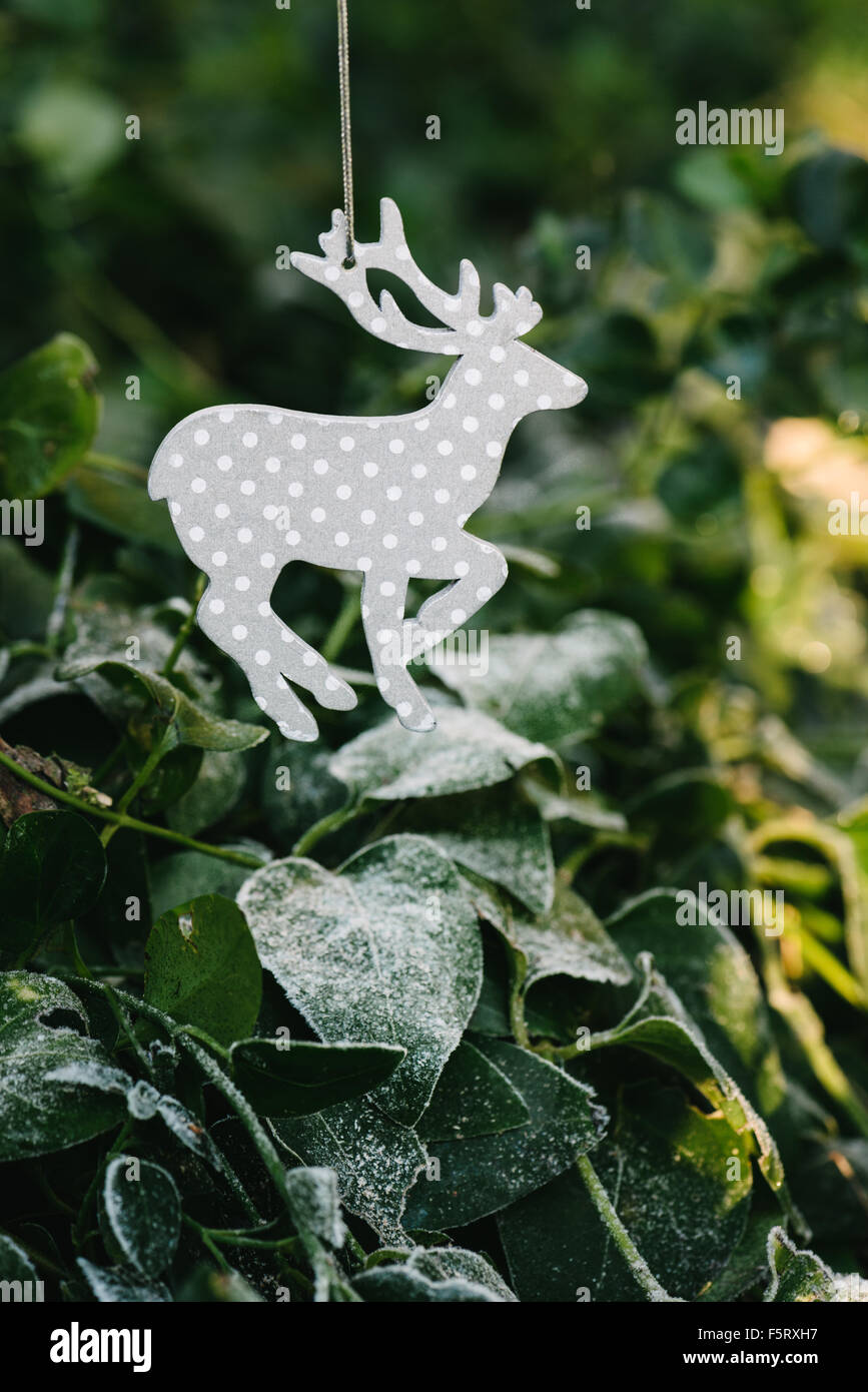 xmas reindeer ornament in the tree - Stock Image