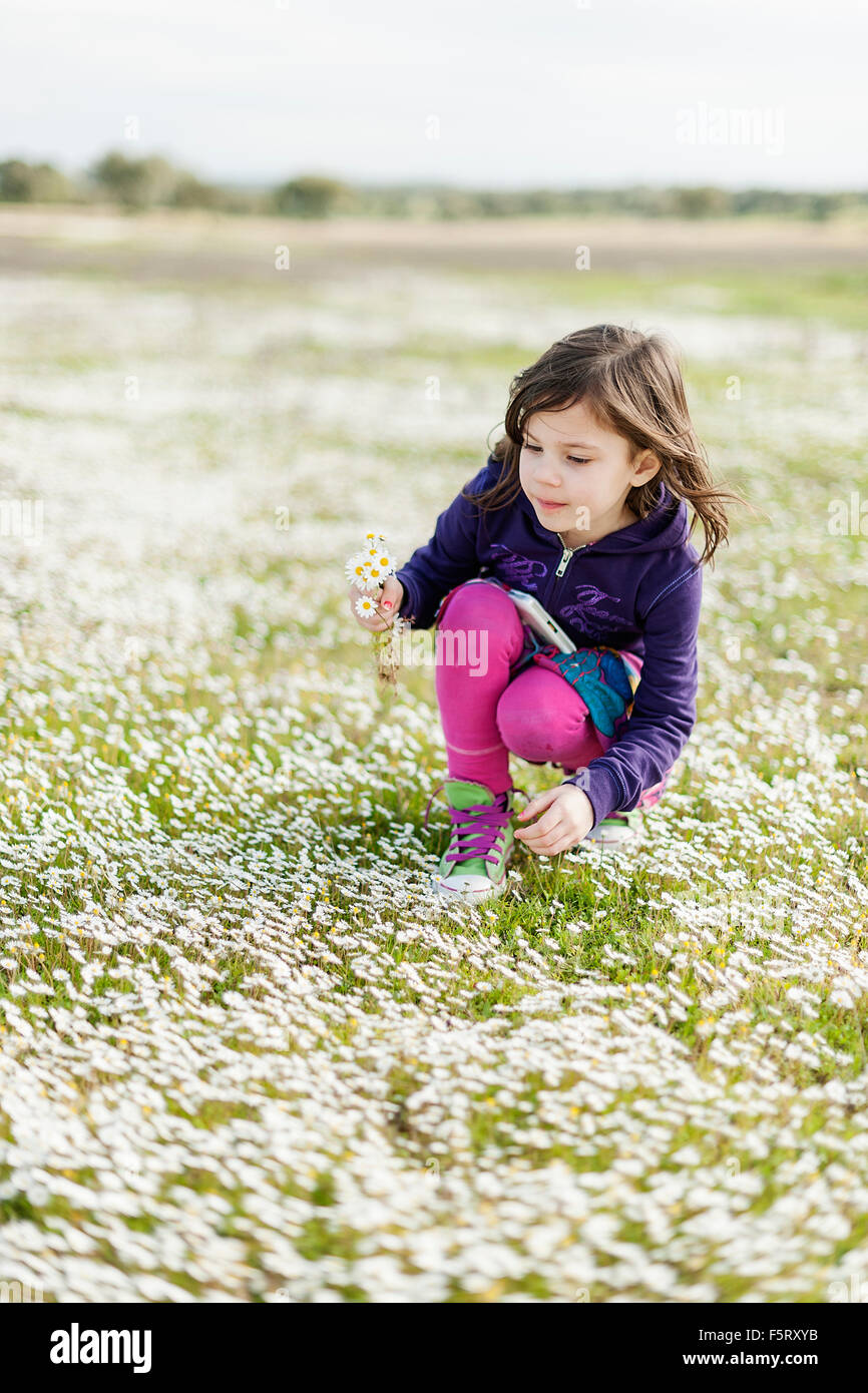 Portugal, Alentejo, Castro Verde, Girl (4-5) picking wildflowers - Stock Image