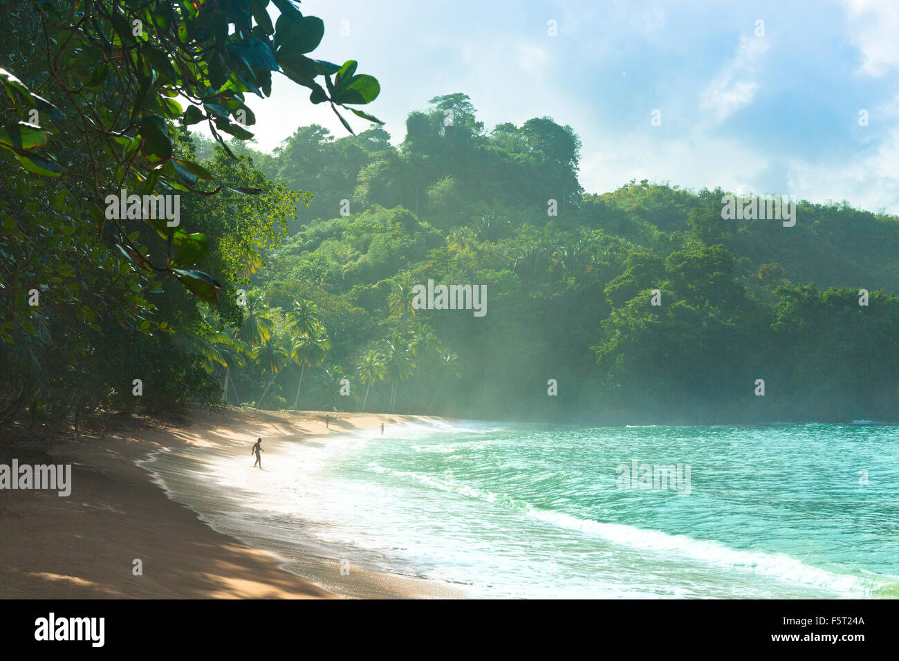 Trinidad and Tobago, Tobago, Englishman's Bay, Scenic view of sea coast - Stock Image