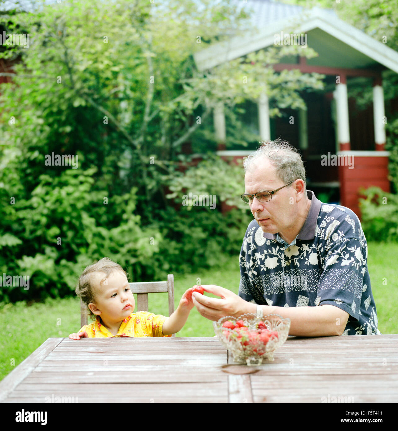 Finland, Uusimaa, Lapinjarvi, Grandfather giving strawberry to granddaughter (2-3) - Stock Image