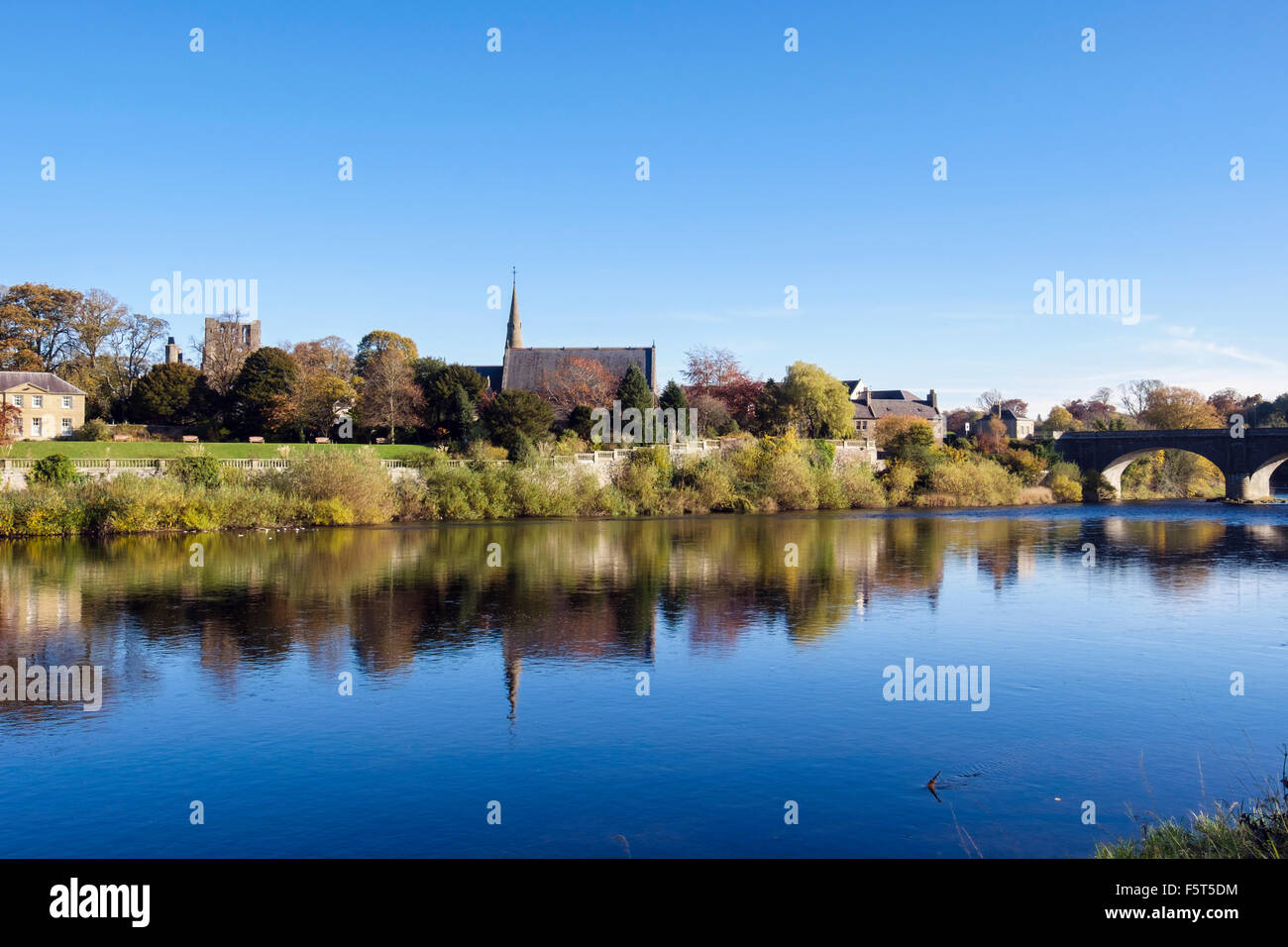 Abbey by St Andrews church and bridge from across River Tweed. Kelso, Berwickshire, Scottish Borders, Scotland, - Stock Image