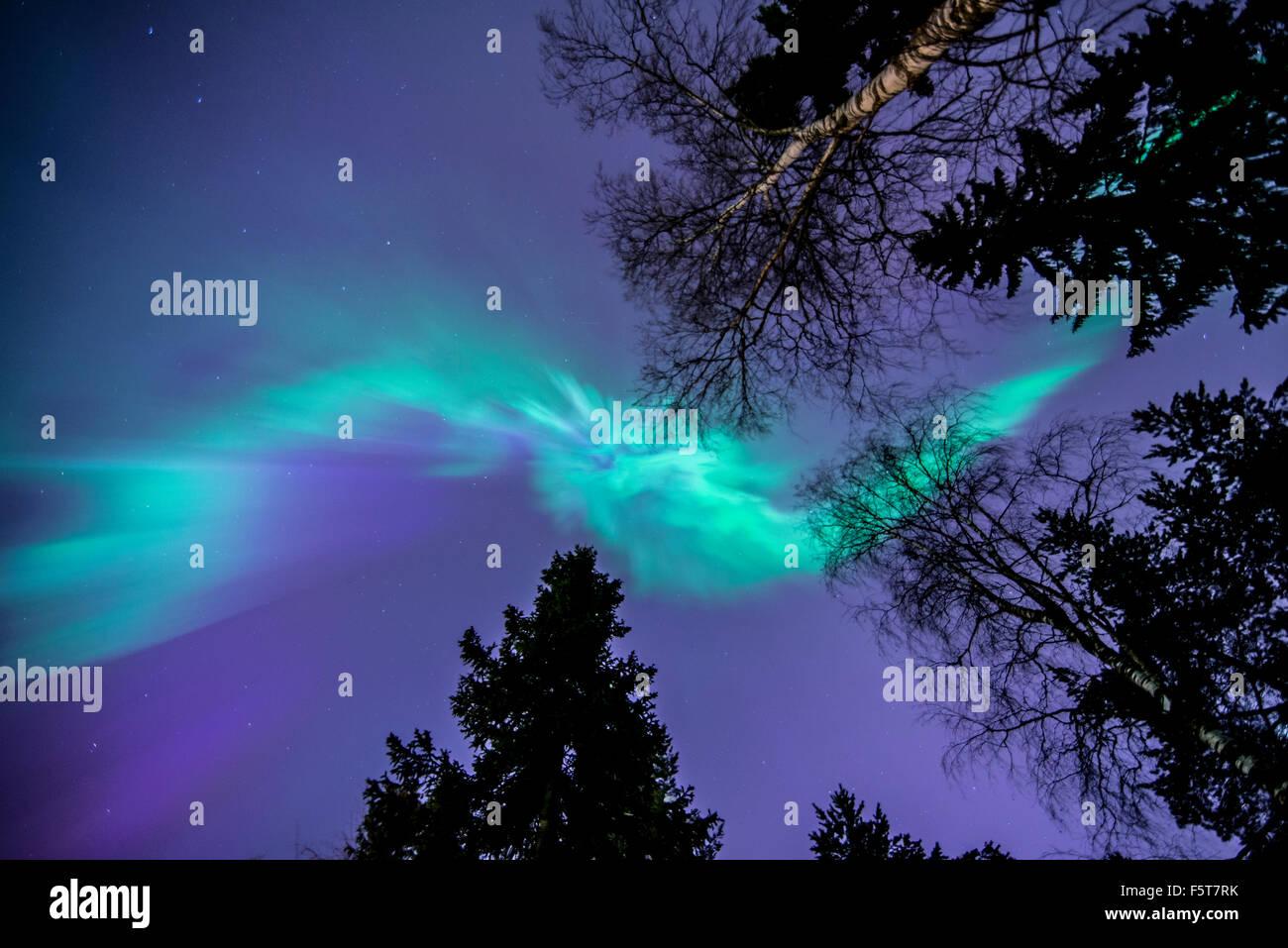 Finland, Pohjois-Pohjanmaa, Oulu, Aurora borealis - Stock Image