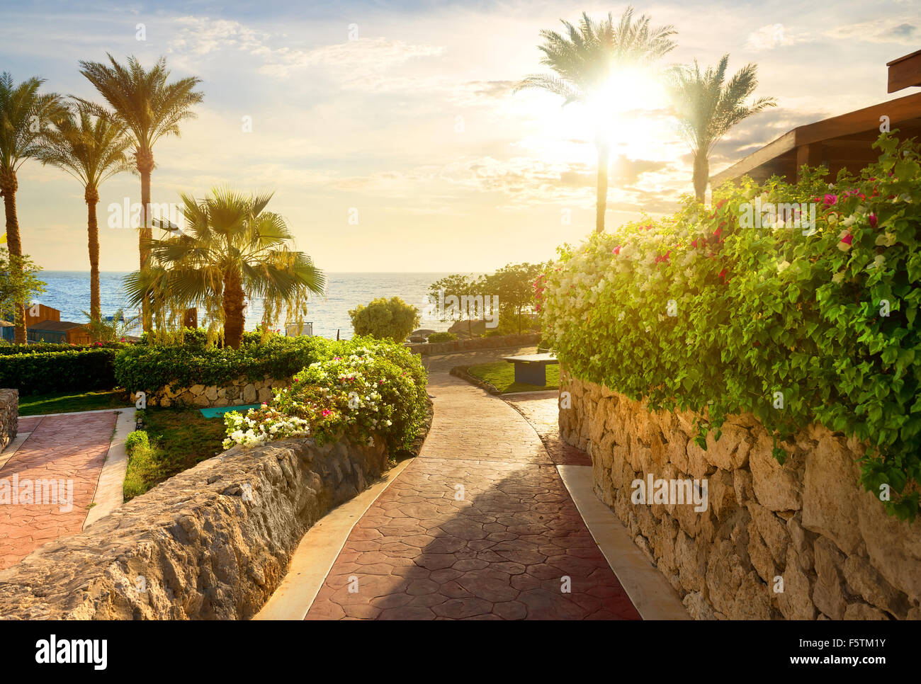 Way to beach of the red sea at sunset - Stock Image